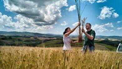 Photo of Ιεράπετρα: Ζητούν οικονομική ενίσχυση των αγροτών