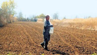 Photo of Αγρότες Ιεράπετρας: «Δεν μας καλύπτουν οι τρέχουσες κυβερνητικές εξαγγελίες»