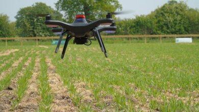 Photo of Φινλανδία: Drones και τεχνητή νοημοσύνη για την προστασία των φωλιών πτηνών