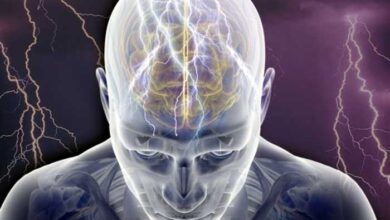 Photo of Είναι αλήθεια ότι χρησιμοποιούμε μόνο το 10% του εγκεφάλου μας;