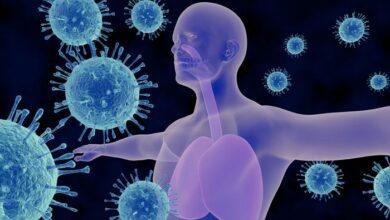 Photo of Αναπνευστικό σύστημα: Τι είναι αυτό που μπορεί να προκαλέσει δυσκολία στην αναπνοή σας
