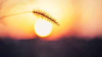 Photo of Εκπληκτικό θέαμα του πλανήτη Ερμή μπροστά από τον Ήλιο