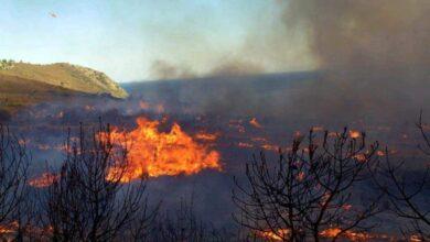 Photo of Οι πυρκαγιές για το 2019 έκαψαν έκταση πρασίνου ίση με το νησί της Σαλαμίνας