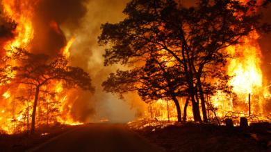Photo of Αυστραλία: Ανεξέλεγκτες οι διαστάσεις των πυρκαγιών στη χώρα