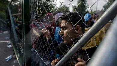Photo of Εταιρία στέλνει μετανάστες σε χωράφια και πλουτίζει σε βάρος τους!