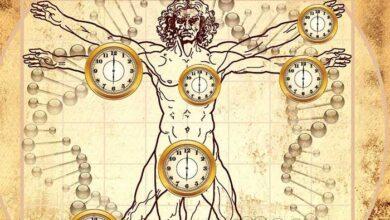 Photo of Κιρκάδιος ρυθμός: Το αρχαιότερο ρολόι που ελέγχει τη ζωή μας