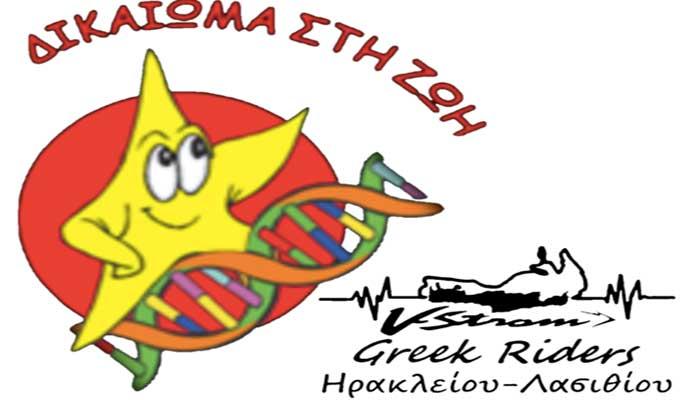 vstrom logo