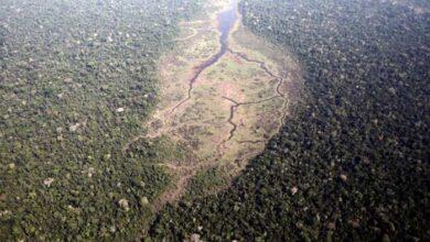 Photo of Ο Αμαζόνιος σε κατάσταση έκτακτης ανάγκης