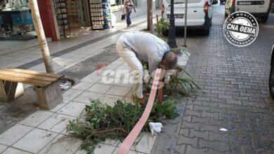Photo of Αγιος Νικόλαος: Ρούσου Κουνδούρου – Ξεχορτάριασμα self service στον πιο τουριστικό δρόμο της πόλης!