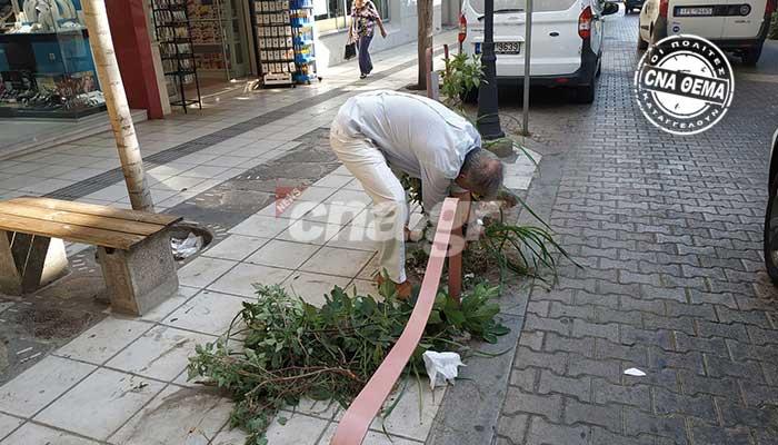 Αγιος Νικόλαος: Ρούσου Κουνδούρου - Ξεχορτάριασμα self service στον πιο τουριστικό δρόμο της πόλης! 1