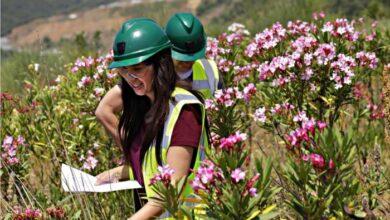 Photo of Χαλκιδική: Μια καινοτόμος περιβαλλοντική πρακτική (video)