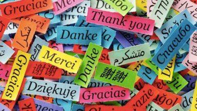 Photo of Το κοινό στοιχείο που έχουν όλες οι γλώσσες της Γης