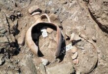Photo of Ηράκλειο: Εσκαβαν σε λιοστάσι για να βρουν Μινωικό τάφο!