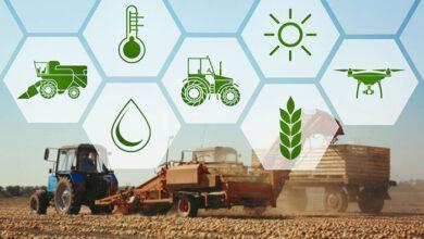 Photo of 16 Οκτωβρίου: Παγκόσμια ημέρα επισιτισμού
