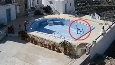 Photo of Η τυφλή γάτα που κακοποιήθηκε στη Φολέγανδρο βρήκε σπίτι (video)