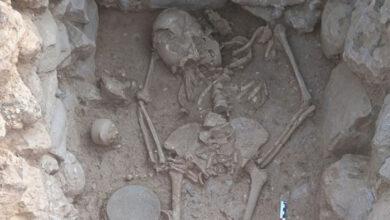 Photo of Σίσι: Αποκαλύφθηκε μινωικός τάφος με άθικτο σκελετό γυναίκας