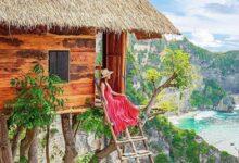 Photo of Ινδονησία: Ένα σπίτι στην κορυφή ενός ψηλού δέντρου (pics)
