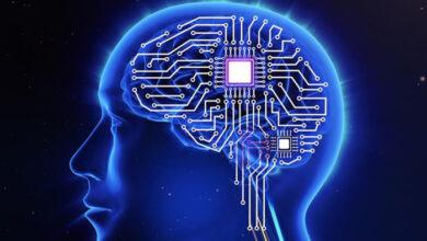 Photo of Επιστήμονες ανακάλυψαν πώς να μεταφέρουν γνώση απευθείας στον εγκέφαλο