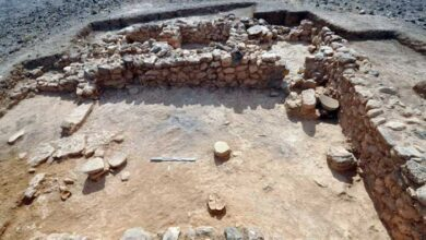 Photo of Ιεράπετρα: Πορφύρα και Μινωικά αντικείμενα ανακαλύφθηκαν στη νήσο Χρυσή