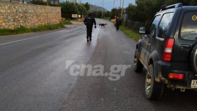 Photo of Αγιος Νικόλαος: Εξονυχιστικό έλεγχο για φόλες στα Λακώνια μετά από καταγγελία στο CNA.GR