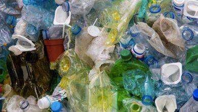 Photo of Κορωνοϊός: Τι πρέπει να κάνουμε με τα σκουπίδια μας – 11 χρήσιμες οδηγίες