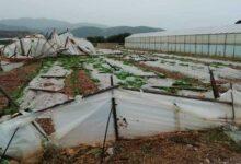 Photo of Ιεράπετρα: Ζημιές σε θερμοκήπια λόγω των ισχυρών νοτιάδων