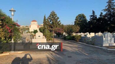 Photo of Αγιος Νικόλαος, Β' Νεκροταφείο: Αρρωστα κυπαρίσσια, επιλεκτική καθαριότητα (pics)