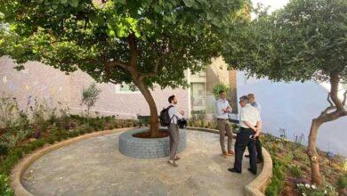 Photo of Πάρκα «τσέπης» – Η νέα τάση που υλοποιούν αρκετοί Δήμοι