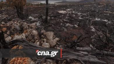 Photo of Αγιος Νικόλαος: Υπό μερικό έλεγχο η φωτιά στο «Βαθύ» – Πάνω από 80 στρέμματα καμένη γη