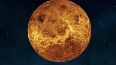 Photo of Πλανήτης Αφροδίτη: Πιθανά σημάδια εξωγήινης ζωής