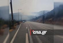 Photo of Αγιος Νικόλαος: Μεγάλη φωτιά στο «Βαθύ» – 7 οχήματα της πυροσβεστικής