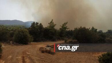 Photo of Αγιος Νικόλαος, Βαθύ: Το CNA.GR κοντά στο σημείο της φωτιάς (pics)