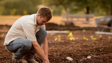 Photo of ΕΕ: Κάθε χρόνο θα δίνονται 2 δις ευρώ στους Έλληνες αγρότες