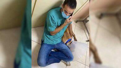 Photo of Χανιά: Συγκινεί ο κτηνίατρος που έσωσε το κακοποιημένο σκυλί