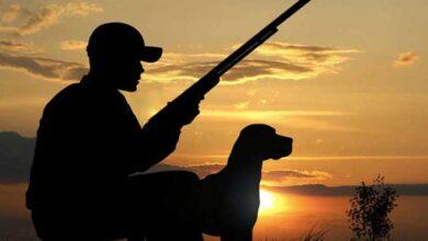 Photo of Κ.Σ. Αγίου Νικολάου: «Δεν ζητάμε απαγόρευση κυνηγιού αλλά λιγότερη πίεση»