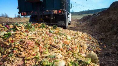 Photo of Με ποιο τρόπο θα μειώσουμε τα απόβλητα των τροφίμων (video)