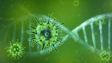 coronavirus metallaksh