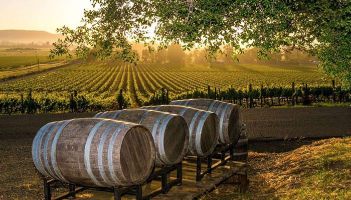 ampelonas wine