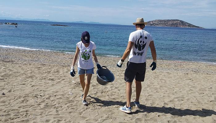 wwf beach clean
